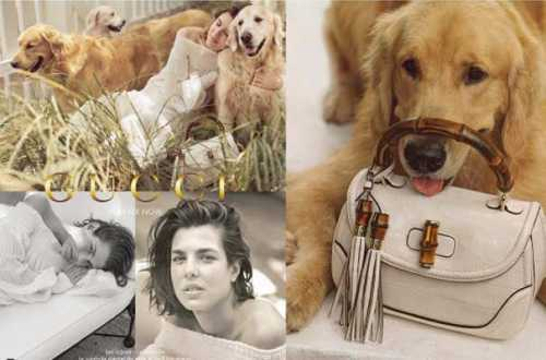 charlotte-casiraghi-campagne-gucci-animaux-septembre-2013_4047159.jpg