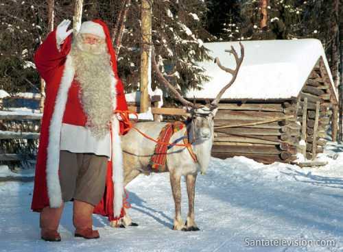 renne du père noël, village du père noël, rovaniemi, finlande