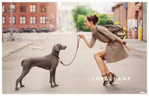 longchamps-oh-my-dog-550x356.jpg
